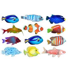 set of aquarium fish vector image