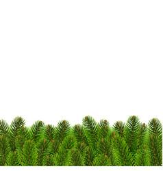 fir tree border vector image vector image