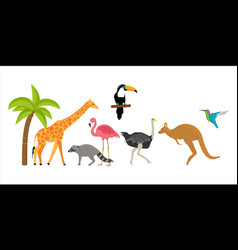 animlas zoo vector image