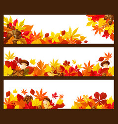 autumn leaf banner border for fall season design vector image