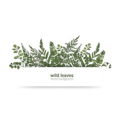 beautiful horizontal background or banner vector image