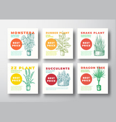 Houseplants signs or label templates vector