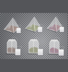 realistic 3d tea bags teabags template mockups vector image