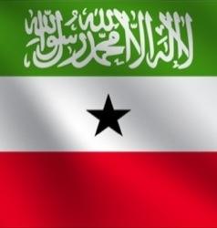 Somaliland flag vector