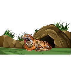 Tiger sleeping in front of the cave vector