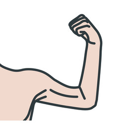 Weak male arms with flexed biceps muscles vector