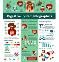digestive system flat infographics vector image vector image