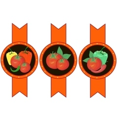 Vegetables ketchup sauce label vector image