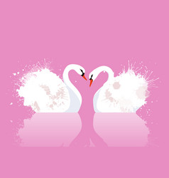 a pair of swans with watercolor splashes vector image