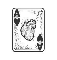 Ace hearts sketch vector