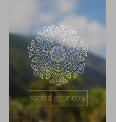 boho sacred geometry mandala on tropic background vector image