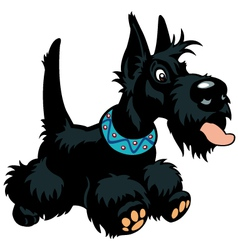 cartoon scottish terrier vector image