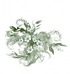 delicate flowers vector image
