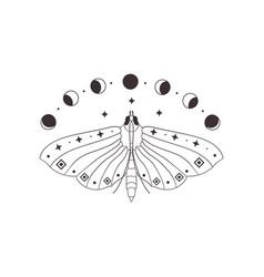 Divine beauty premade logo design black butterfly vector