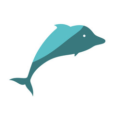 dolphin icon image vector image