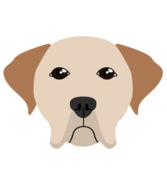 labrador retriever avatar vector image