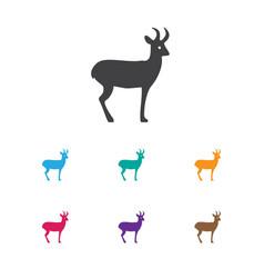 of zoo symbol on deer icon vector image