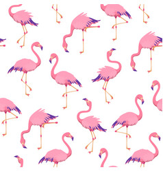 Pink flamingos pattern cute tropical birds vector