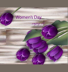 ultra violet tulip flowers realistic women vector image
