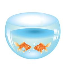 Gold fish in aquarium2 vector
