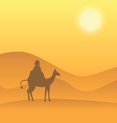 desert camel vector image