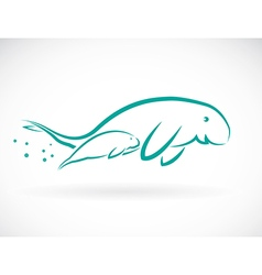 Dugongs vector image
