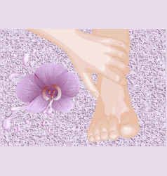 Foot massage and flower vector