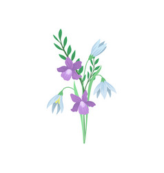 gorgeous bouquet of blue snowdrops and purple vector image