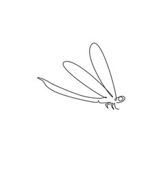 one single line drawing cute dragonfly vector image