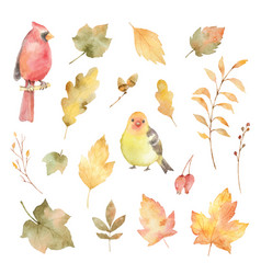 Watercolor autumn set of leaves and birds vector