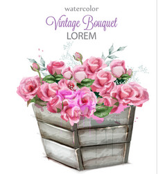 watercolor delicate roses beautiful vector image