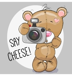 Bear with a camera vector image vector image