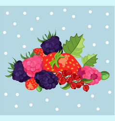 blackberries background card vector image vector image