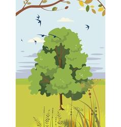 blossoming linden summer landscape vector image