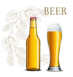 bottle of beer and a glass on the background vector image