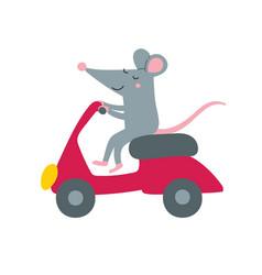 Cute rat on bike vector