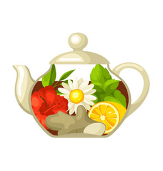 glass teapot with different tastes vector image