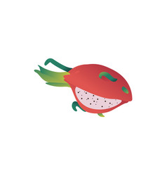 pitaya asian gradon fruit cartoon icon vector image
