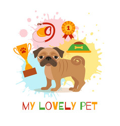 pug care infographic concept with dog grooming vector image