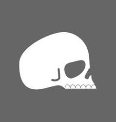 skull profile isolated head of skeleton vector image