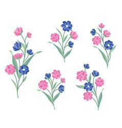 flower set floral bouquet summer decorative vector image