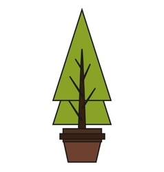 Isolated pine tree of christmas season design vector