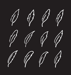 group of hand drawn feather on black background vector image vector image