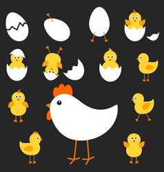 with the mother hen and her chickens vector image vector image