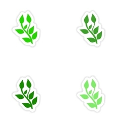 Assembly realistic sticker design on paper basil vector