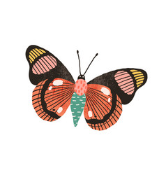 Butterfly with bright wings and antennae isolated vector
