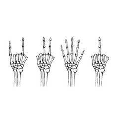 hands skeleton with different gestures vector image