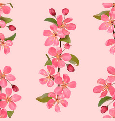 pink blossoming cherry branches romantic seamless vector image