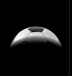 realistic soccer ball or football ball in shadow vector image