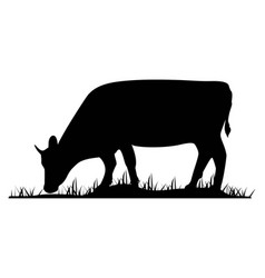 Silhouette of the cow farm animal on the grass of vector